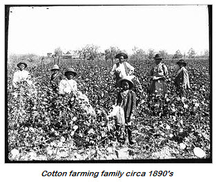 2014.09.01—history-cotton.farmers