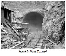 2015.03.30-history-hawks.nest