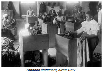 2015.05.04-history-tobacco.stemmers
