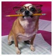 2015.05.04-humor-dog